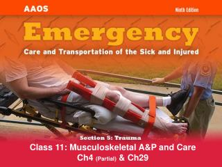 Class 11: Musculoskeletal A&P and Care Ch4  (Partial)  & Ch29