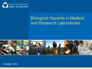 Biological Hazards in Medical  and Research Laboratories