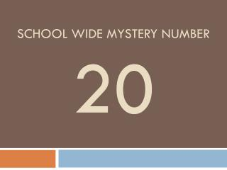 School wide mystery number 20