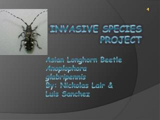 Invasive Species Project