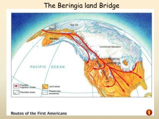 The  Beringia  land Bridge