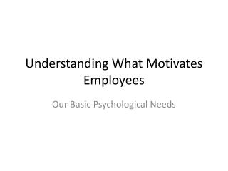 Understanding What Motivates Employees