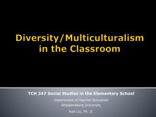 Diversity/Multiculturalism in the Classroom