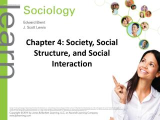 Chapter 4: Society, Social Structure, and Social Interaction