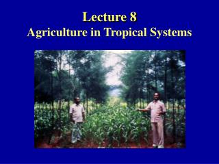 Lecture 8 Agriculture in Tropical Systems