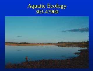 Aquatic Ecology 303-47900
