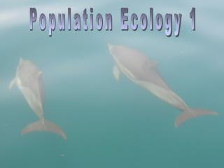 Population Ecology 1