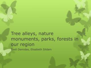 Tree alleys ,  nature monuments ,  parks ,  forests in our region