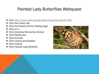 Painted Lady Butterflies  Webquest