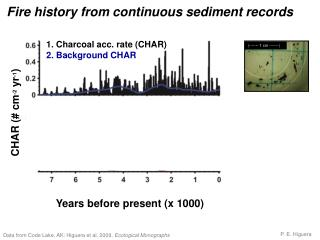 Fire history from continuous sediment records