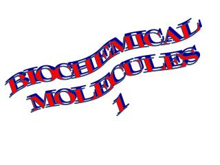 BIOCHEMICAL MOLECULES 1