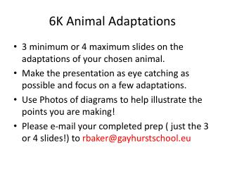 6K Animal Adaptations