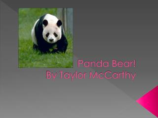 Panda Bear! By  T aylor McCarthy