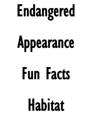 Endangered Appearance Fun Facts Habitat