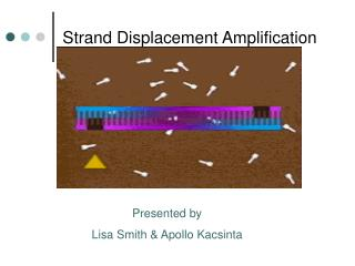 Strand Displacement Amplification