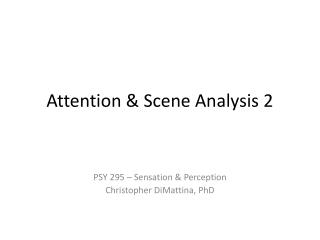 Attention & Scene Analysis 2