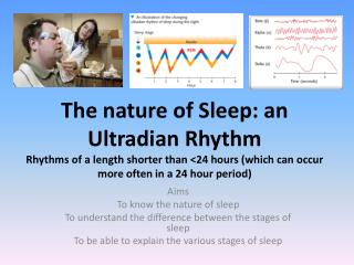 Aims  To know the nature of sleep To understand the difference between the stages of sleep