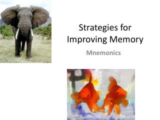 Strategies for Improving Memory