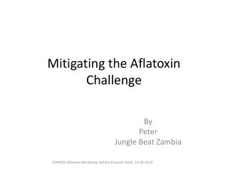 Mitigating the  Aflatoxin  Challenge