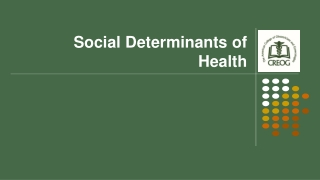 Disparities in the availability of social network support to pregnant mothers