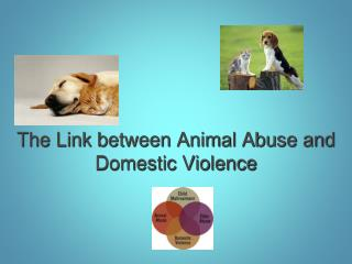 The Link between Animal Abuse and Domestic Violence