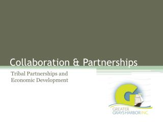 Collaboration & Partnerships