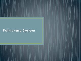 Pulmonary System