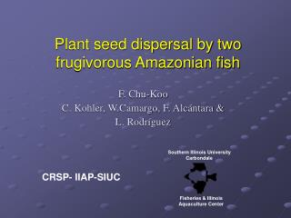 Plant seed dispersal by two frugivorous Amazonian fish