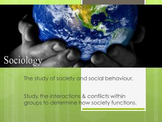 Study the interactions & conflicts within groups to determine how society functions.