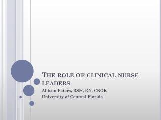 The role of clinical nurse leaders
