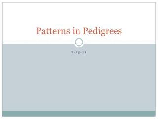 Patterns in Pedigrees