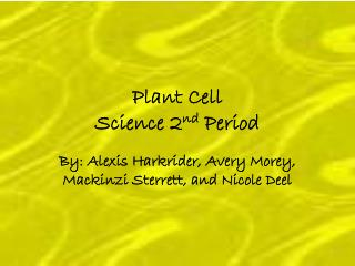 Plant Cell  Science 2 nd  Period
