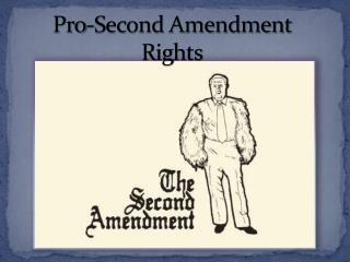Pro-Second Amendment Rights