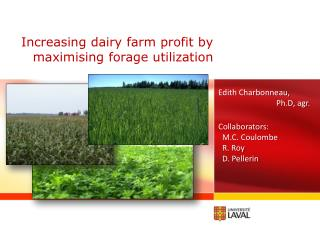 Increasing dairy farm profit by maximising forage utilization