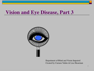 Vision and Eye Disease, Part 3