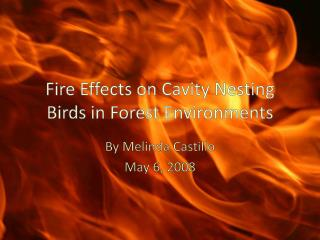 Fire Effects on Cavity Nesting Birds in Forest Environments