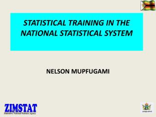 STATISTICAL TRAINING IN THE NATIONAL STATISTICAL SYSTEM