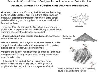 Materials World Network: Designer Nanodiamonds for Detoxification  Donald.W. Brenner, North Carolina State University, D
