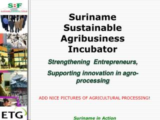 Suriname Sustainable Agribusiness Incubator Strengthening  Entrepreneurs,