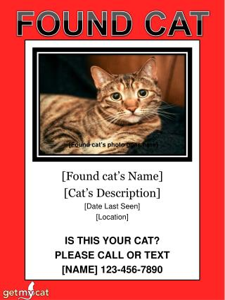 [Found cat ' s Name] [Cat ' s Description] [Date Last Seen] [Location] IS THIS YOUR CAT?