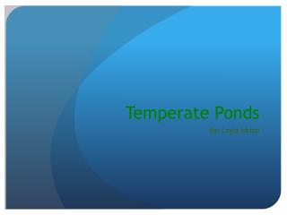Temperate Ponds