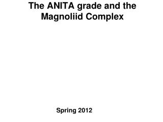 The ANITA grade and the  Magnoliid  Complex