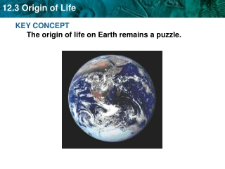 KEY CONCEPT The origin of life on Earth remains a puzzle.