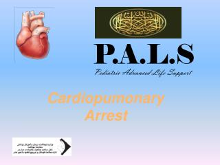 Cardiopumonary  Arrest