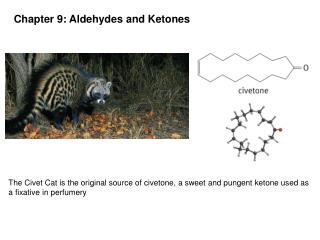 Chapter 9: Aldehydes and Ketones