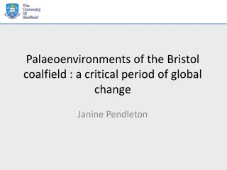 Palaeoenvironments of the Bristol coalfield : a critical period of global change