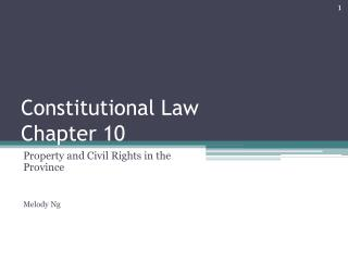 Constitutional Law Chapter 10