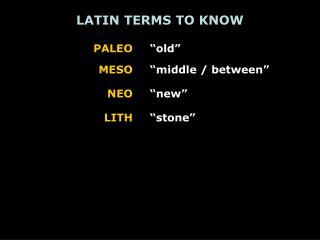 LATIN TERMS TO KNOW