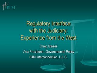 Regulatory Interface  with the Judiciary:  Experience from the West