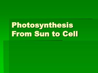 Photosynthesis From Sun to Cell
